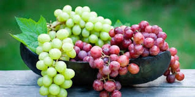 تاثیر انگور در سلامتی