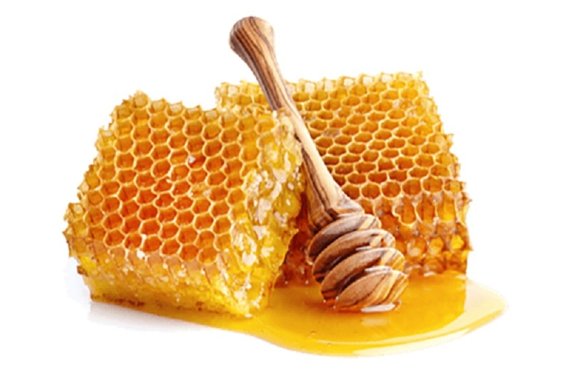 اهمیت انتخاب محل زنبورستان