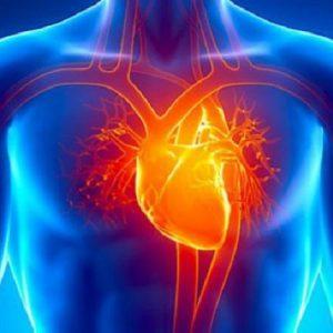 بیماری های قلب