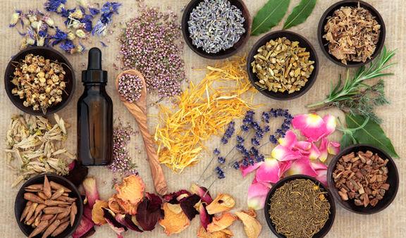 درمان ترشح از نوک پستان ها در طب گیاهی