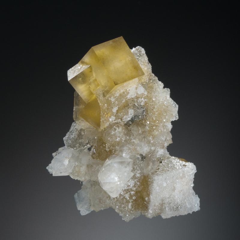 نقش فیزیولوژیک عناصر معدنی
