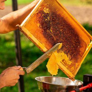 عسل تقلبی