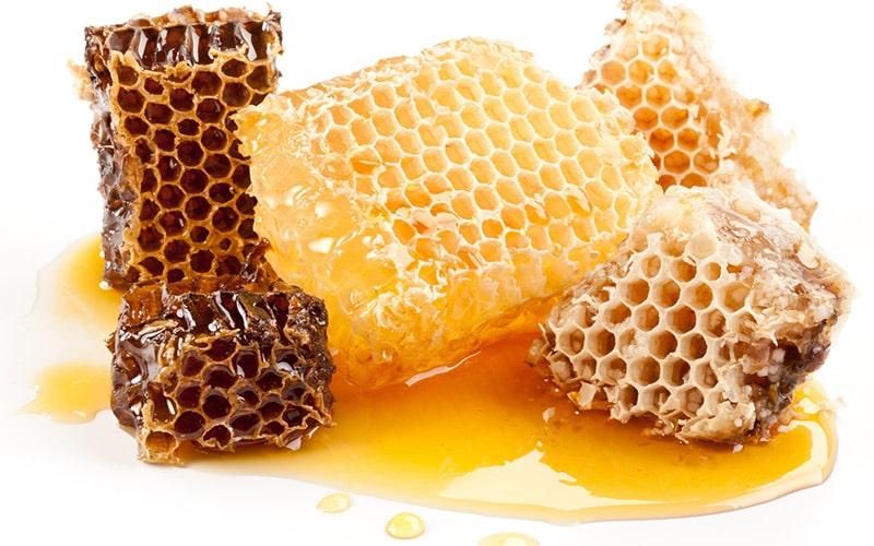 نظر دانشمندان درباره ی عسل و زنبور عسل