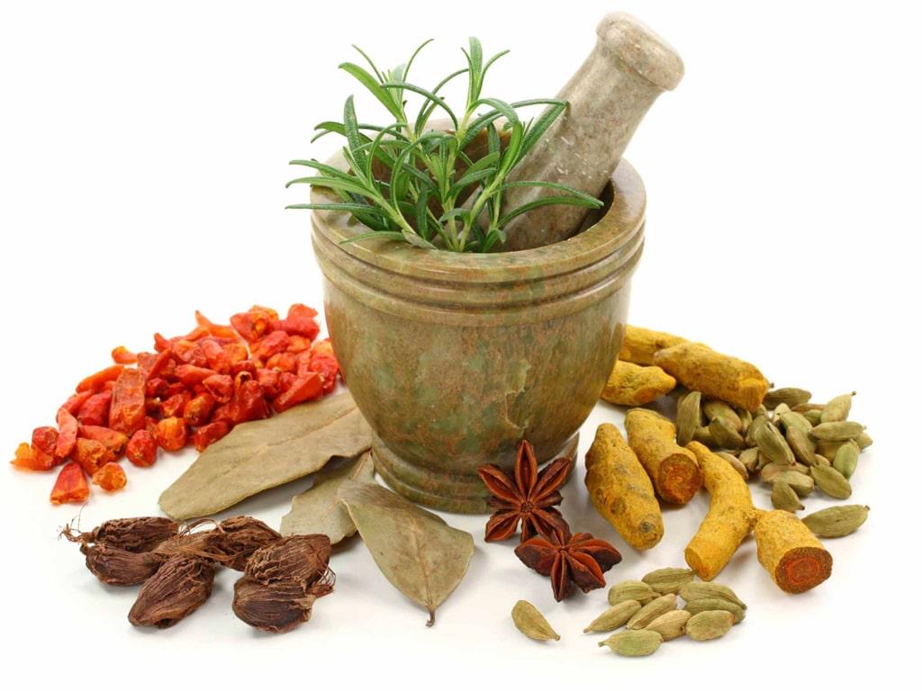 داروهای مهم در طب سنتی