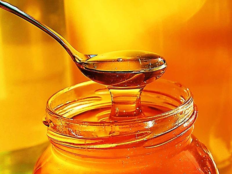 رساله ذهبیه ، شناخت عسل