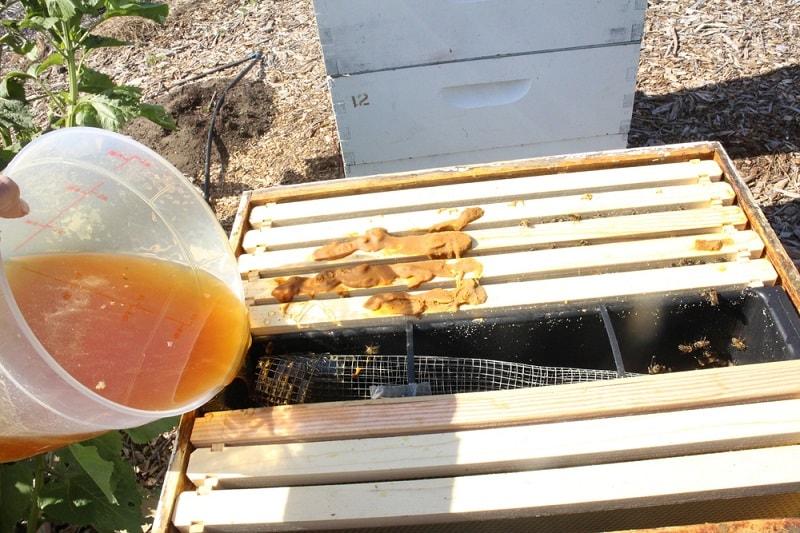 نحوه تهیه شربت در پرورش زنبورعسل