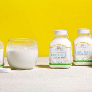 پروتئین های شیر شتر