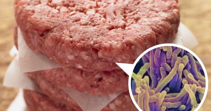 آلودگی و تعفن گوشت