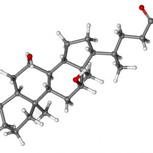 اسیدهای صفراوی
