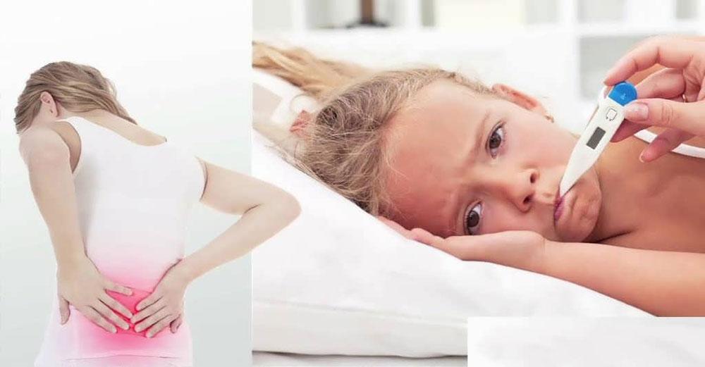 بیماری تب مالت-3