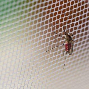 دافع حشرات