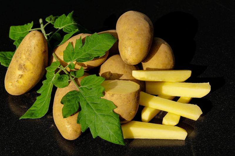 مسمومیت با سیب زمینی