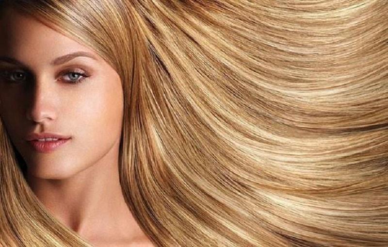 سفیده مو (کورتکس)