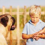 ترس کودکان از حیوانات