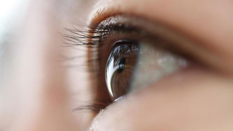 چشم در علم پزشکی-1