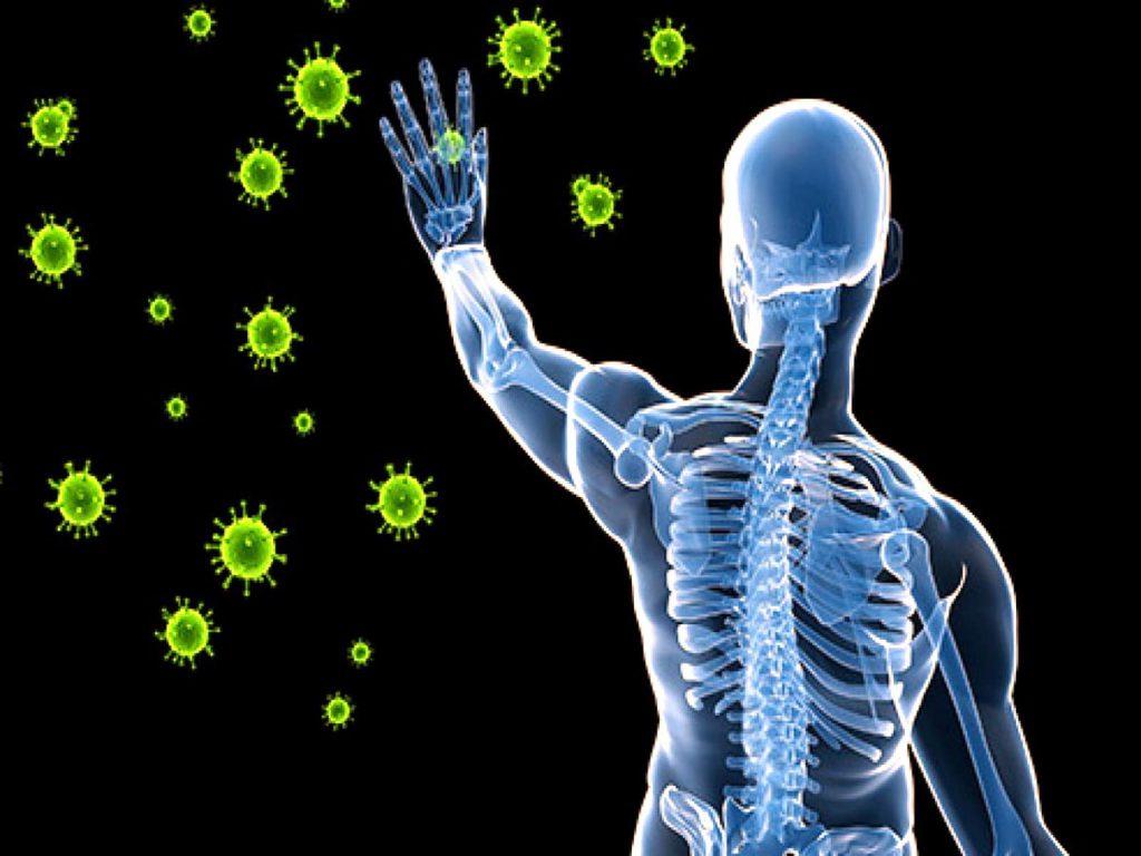 نظام ایمنی بدن