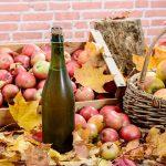 تاریخ سرکه سیب