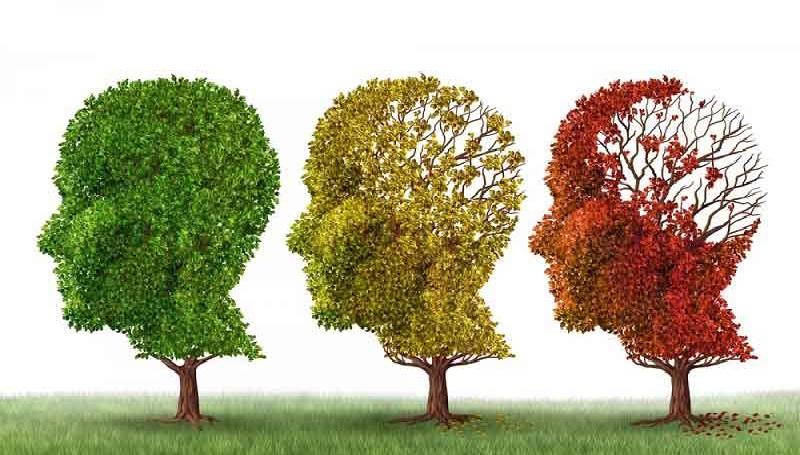 تقویت حافظه با زعفران