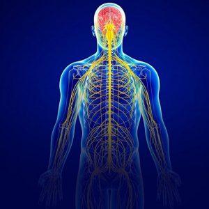 درمان سیستم عصبی