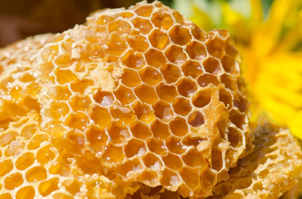 عسل سرشار از مواد معدنی حیاتی و ریزمغذیها
