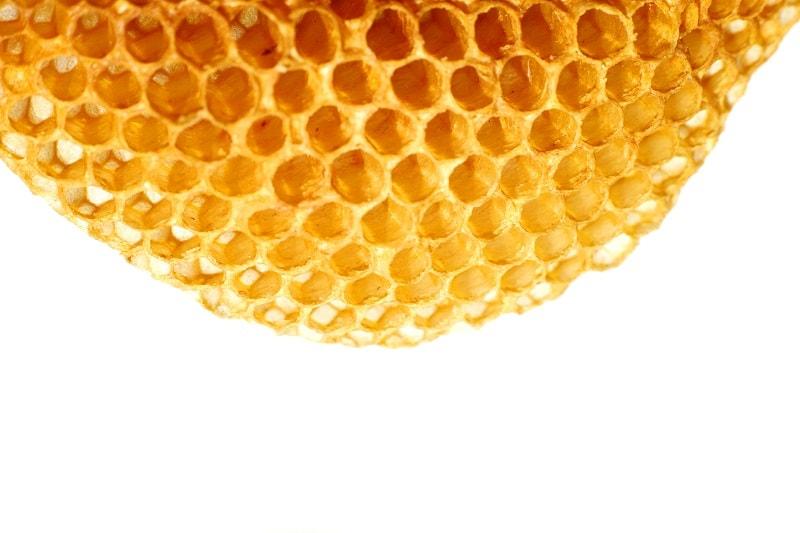 شناسایی عسل از طریق گرده