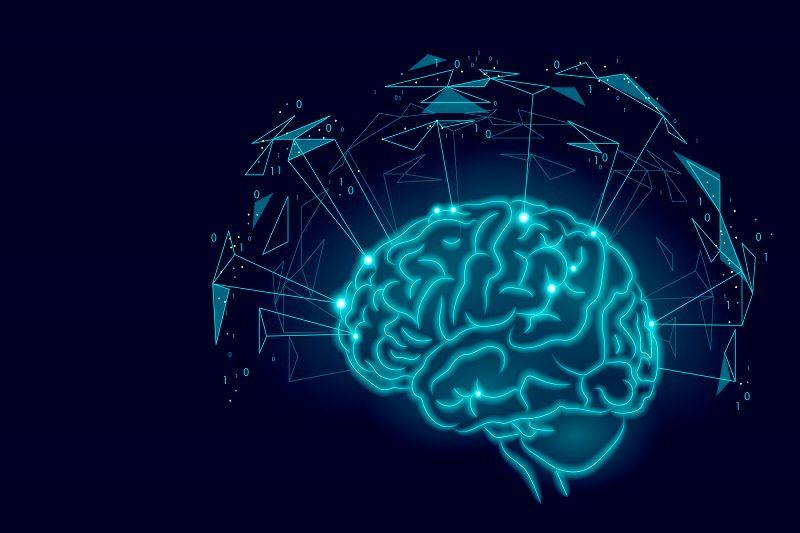 1- دستگاه عصبی