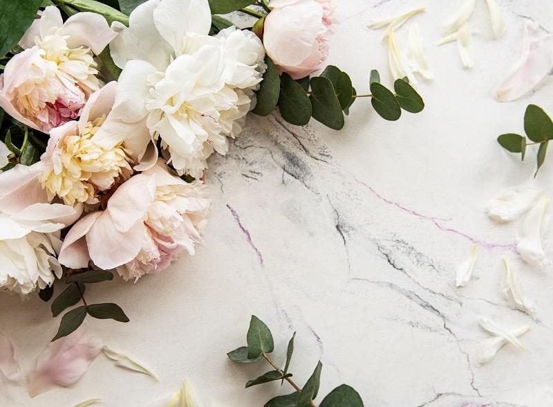 نحوه مصرف گل صد تومانی