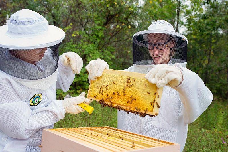 ابزار زنبورداری - لباس مخصوص زنبورداری