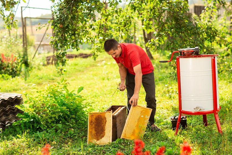دستگاه استخراج عسل