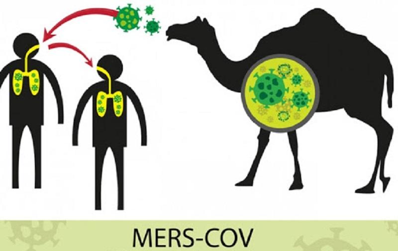سندرم تنفسی خاورمیانه کروناویروس (MERS-CoV)