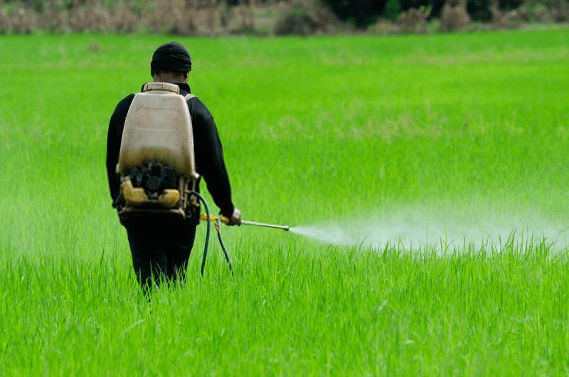 از کشاورزی غیرارگانیک تا کشاورزی ارگانیک