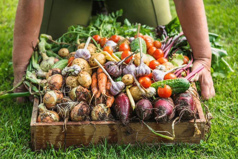 بستر فرهنگی تحقیق پیرامون الزامات ترویج کشاورزی ارگانیک