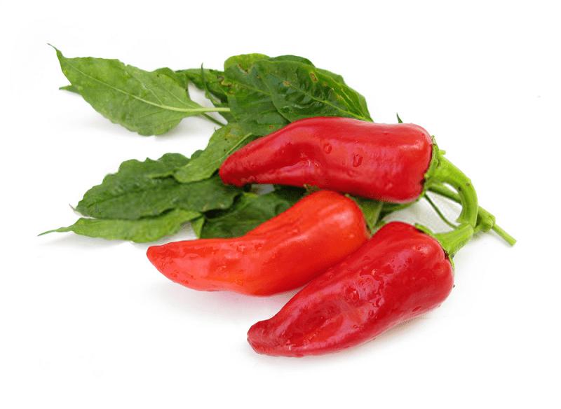 Capsaicine موجود در ترکیبات گیاه فلفل فرنگی