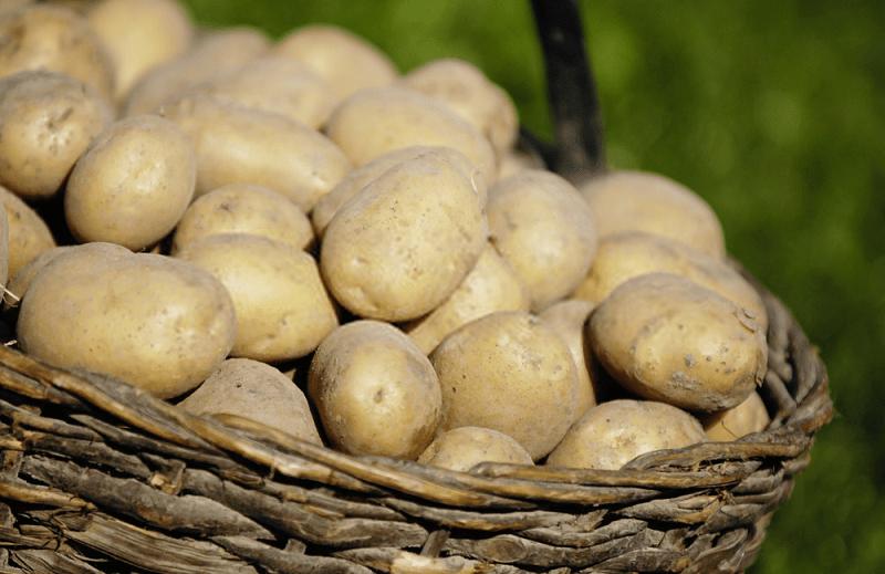 ترکیبات شیمیایی سیب زمینی
