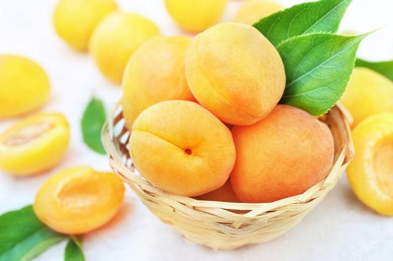 میوه درخت زردآلو