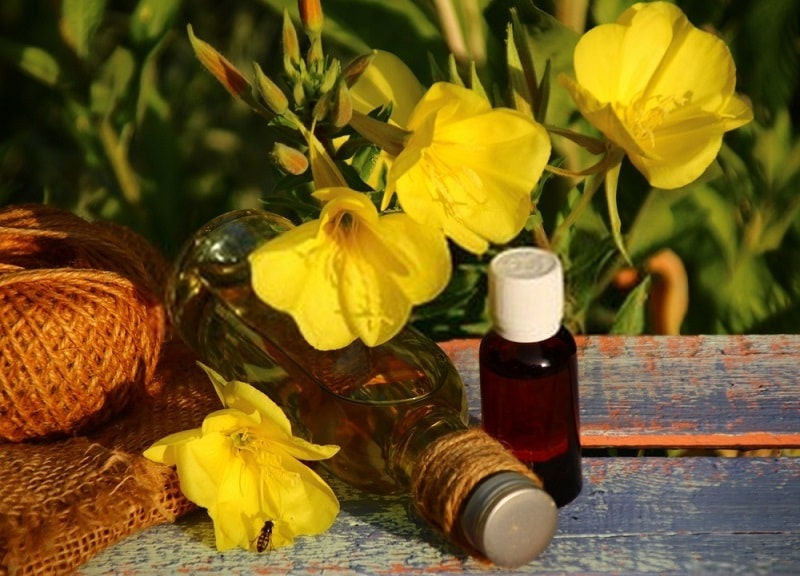 ترکیبات و اثر درمانی روغن دانه گل مغربی