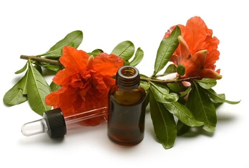 ترکیبات شیمیایی درخت انار