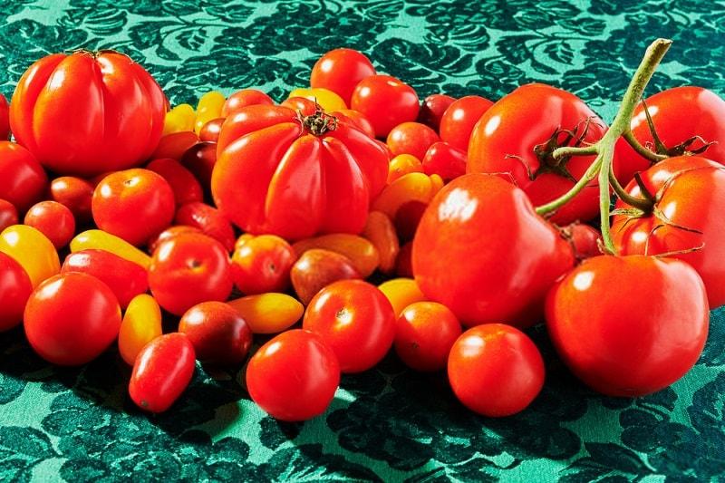سلامت مواد و محصولات غذایی