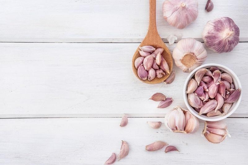 گیاهان ضد سرطان- سیر
