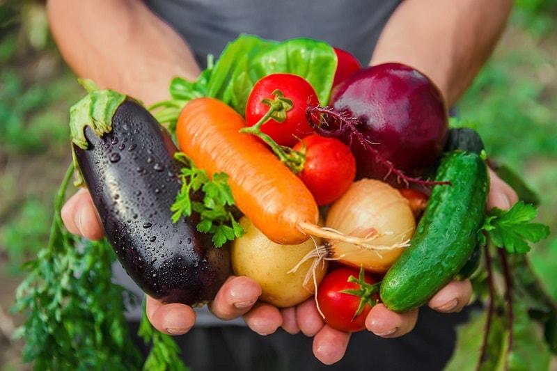 انجمن تولید کنندگان محصولات ارگانیک