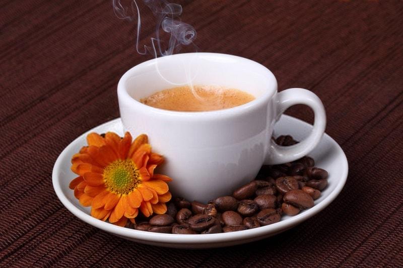 گونه های مختلف قهوه