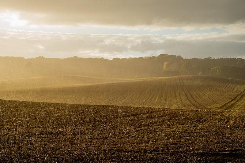 مواد ارگانیک پایدار خاک