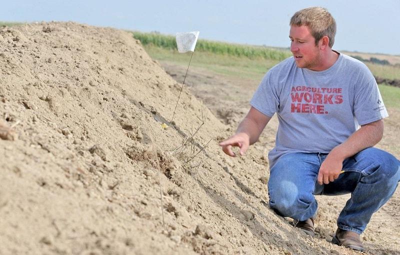 7- پرهیز از خاک و مواد کارخانه ای و استاندارد