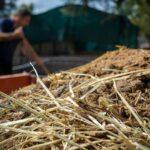 کودهای حیوانی در زراعت ارگانیک