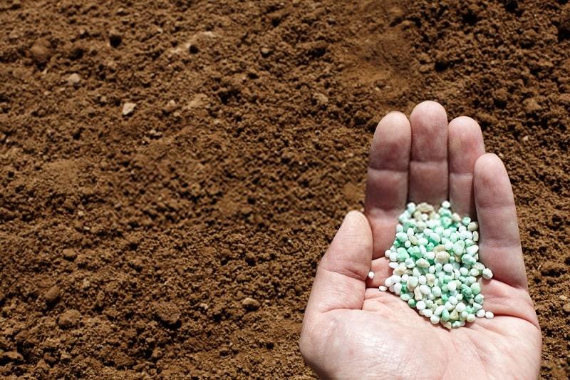 کود زیستی فسفاته بارور -۲ ویژه درختان