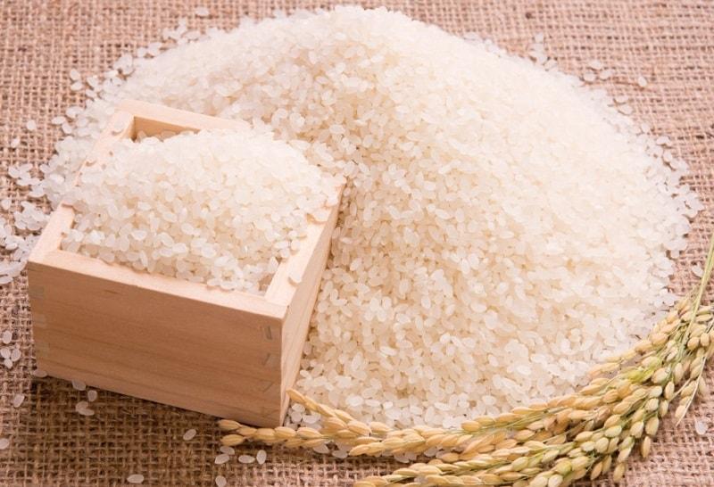 نوعی برنج وحشی