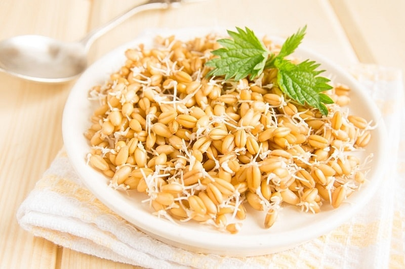جوانه گندم به عنوان رژیم غذایی