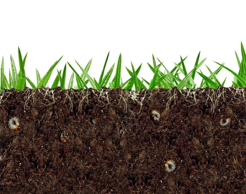 تراکم در لایه زیرسطحی خاک