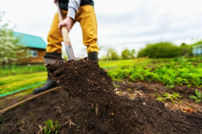 اثرات کشت تناوبی بر ساختار خاک