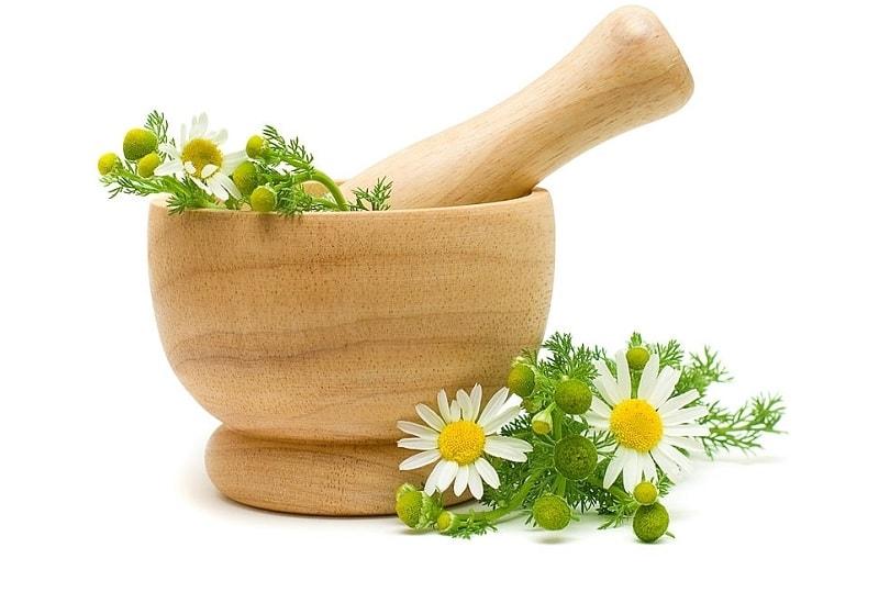 استفاده از گیاه بابونه به منظور رفع درد و تب